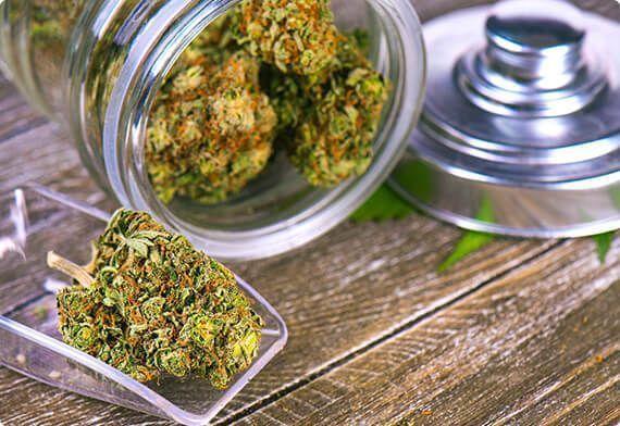 super cogollos de Marihuana CBD