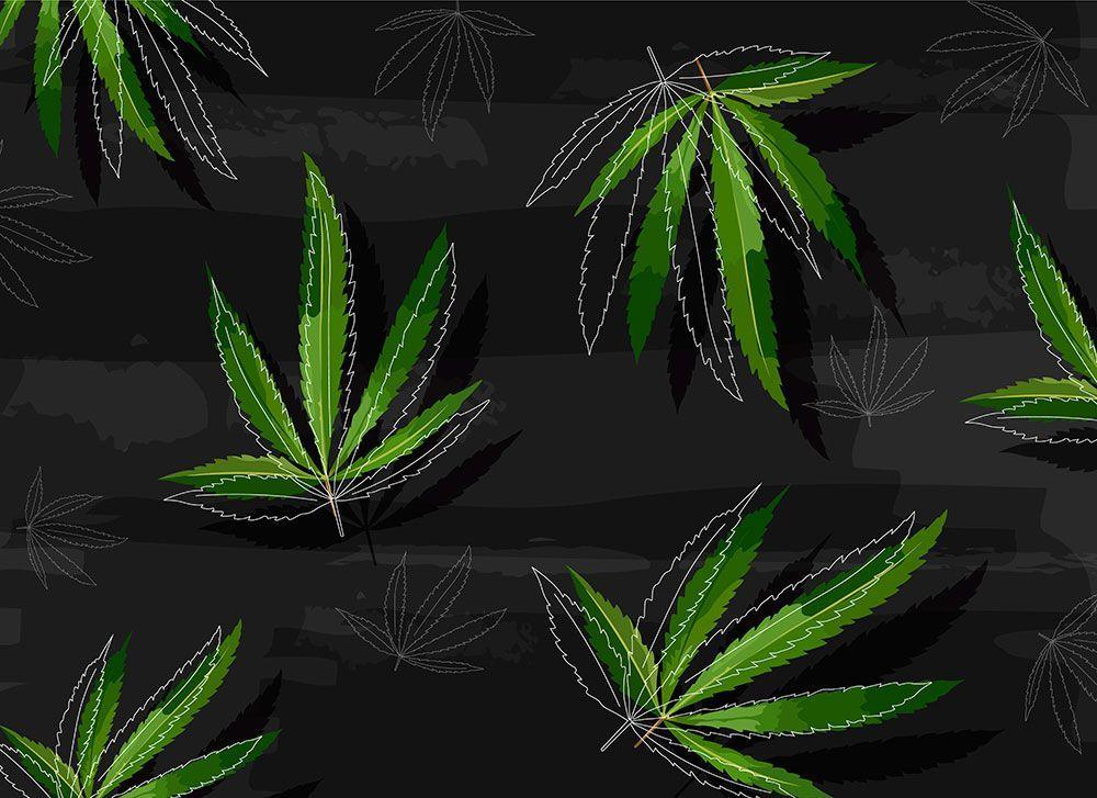 deficiencias de la marihuana